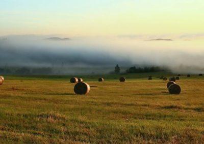 countryside_jaro_jensovsky5-e1479031137529